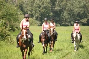 lovaglás 2
